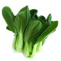 小青菜种子