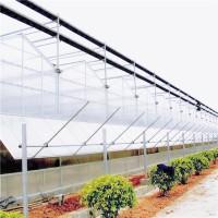阳光板温室 生产阳光板温室