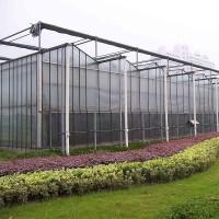 供应阳光板温室